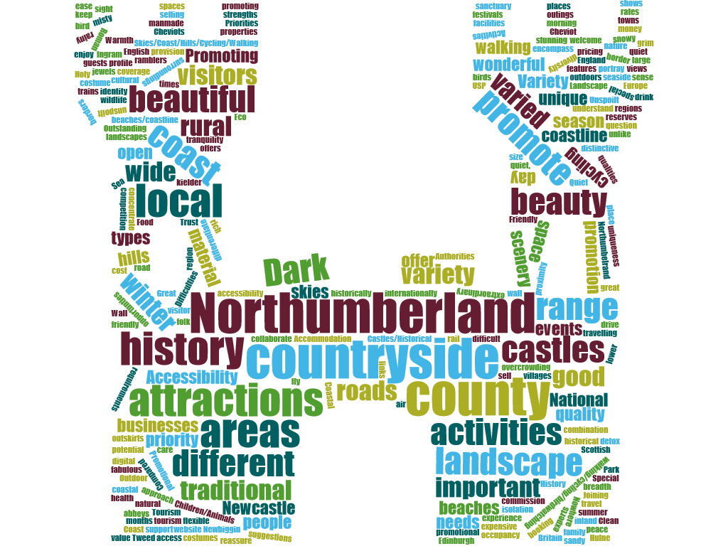 wordcloud priorities for promotion